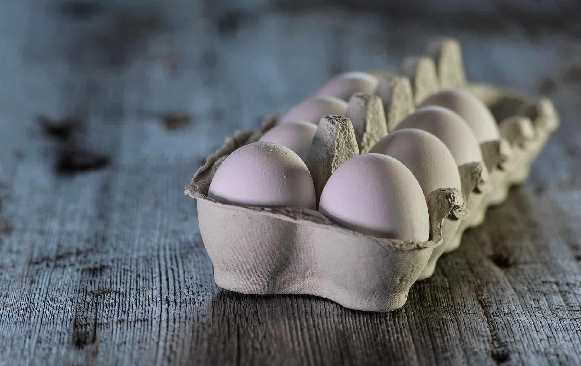 Eierkocher: Test & Empfehlungen (01/20)
